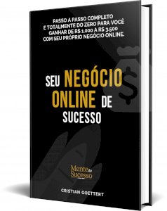 """Livro """"Seu negócio on line de Sucesso Já!"""""""