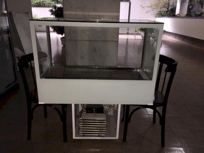 Vitrine Expositora em Inox  Aquecida e Refrigerada com Sistema de Ar Forçado e Controle Digital